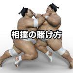 ブックメーカー,相撲