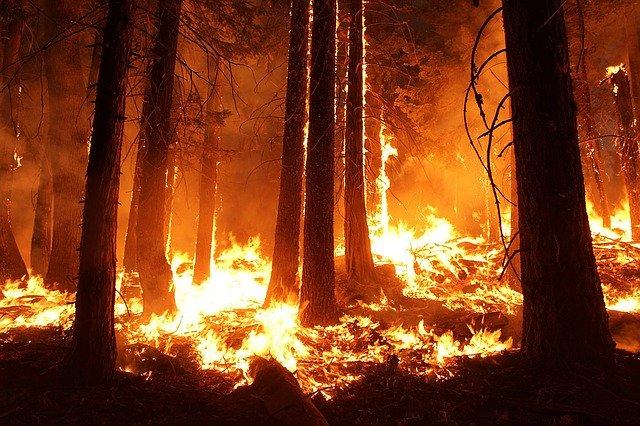 オーストラリア,山火事,メルボルン